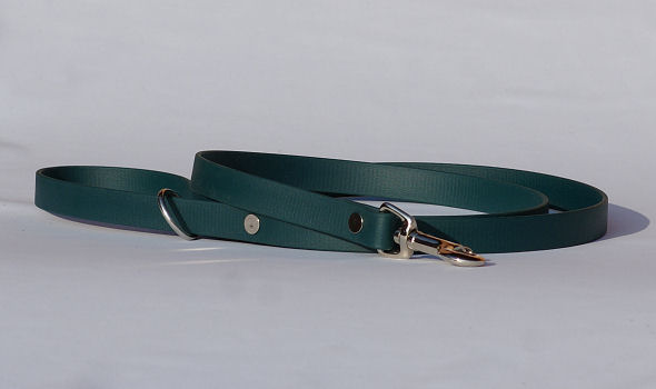 Leash made of Biothane, green - Bayaana