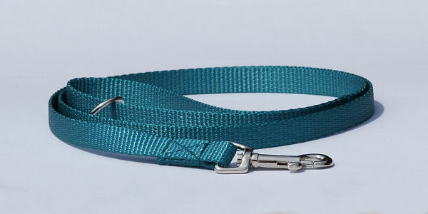 Lead made of webbing, teal - Bayaana