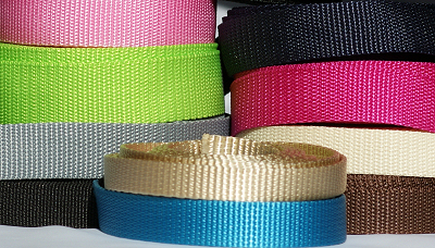 Webbing or leads and martingale style collar clasps
